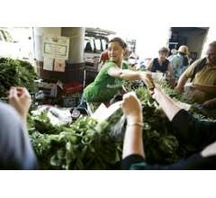 Image for US Celebrates National Farmers Market Week