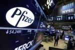Pfizer Misses Forecasts Net Income Plummets