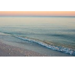 Image for Tourism on Gulf Coast Rebounds