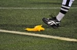 """NFL Players and Coaches Demand Return of """"Real Refs"""""""