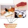 Foodborne Illnesses Still Sending Many to the Hospital