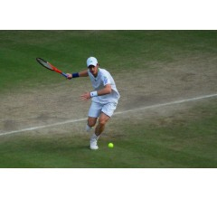 Image for Murray now looks to earn more Slam titles