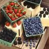 Blueberries Help Lower Diabetes Risk