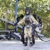Iron Man Armor Planned for U.S. Army Forces
