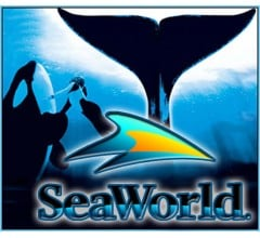 Image for SeaWorld's Earnings Beat Expectations (NYSE:SEAS)
