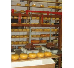 Image for Cheese Makers Fear Wood Crackdown