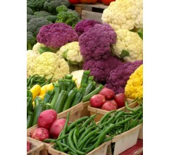 Image for Breeders and Chefs Unite With Researchers for Better Veggies