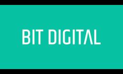 Bit Digital logo
