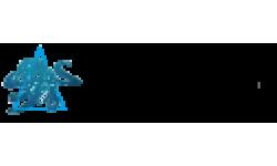 Coda Octopus Group logo
