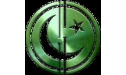 Pakcoin logo