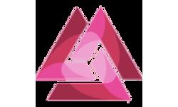 Trinity Network Credit logo