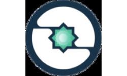 Insights Network logo