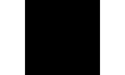 Bulleon logo