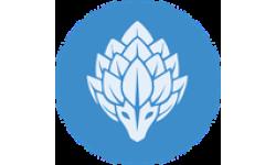 PengolinCoin logo