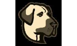Kangal logo