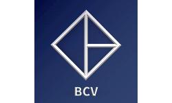 BitCapitalVendor logo