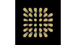 Decentr logo
