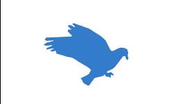 DMM: Governance logo