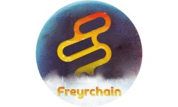Freyrchain logo