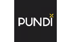 Pundi X[new] logo