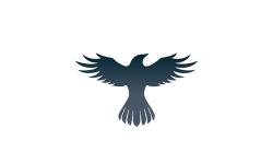 Raven Protocol logo