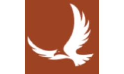 Falcon Capital Acquisition logo