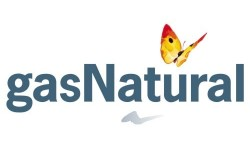 Naturgy Energy Group logo