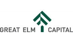 Great Elm Capital logo