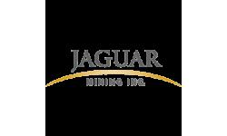 Jaguar Mining logo