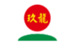 Nine Dragons Paper logo