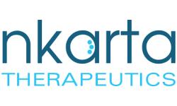 Nkarta logo