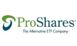 ProShares Ultra MSCI Emerging Markets logo