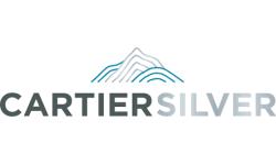 Taisei logo