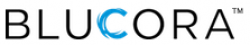 BLUCORA INC Common Stock logo