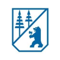 Borregaard ASA logo