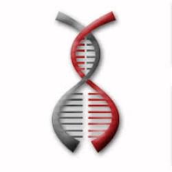 Co-Diagnostics logo