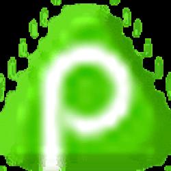 PayPeer logo