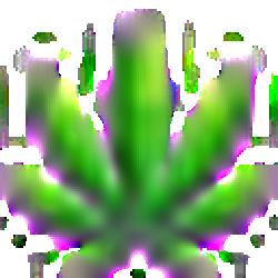 KushCoin logo