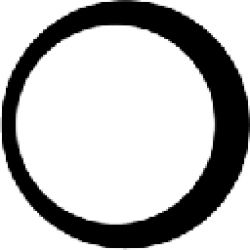 Blackmoon logo