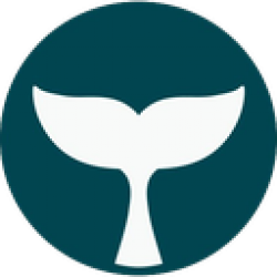 BelugaPay logo