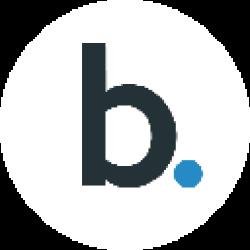Bridge Mutual logo
