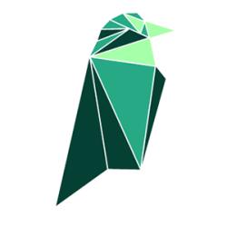 Ravencoin Classic logo