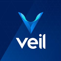 Veil logo
