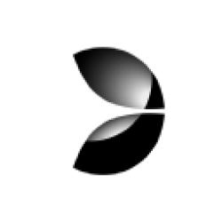 Evolution Gaming Group AB (publ) logo