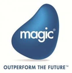 Magic Software Enterprises Ltd logo