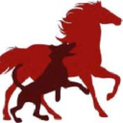 PetVivo logo