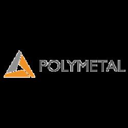 POLYMETAL INTL/S logo
