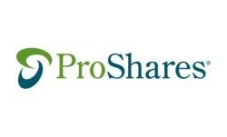ProShares UltraShort Russell2000 logo