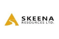Skeena Resources Limited (SKE.V) logo