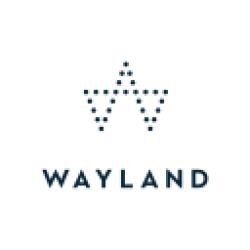 Wayland Group logo